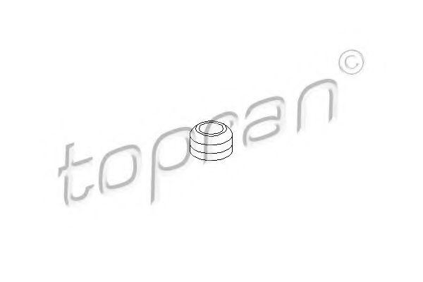 Фото: TOPRAN 100291