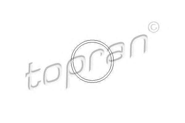 Фото: TOPRAN 202288