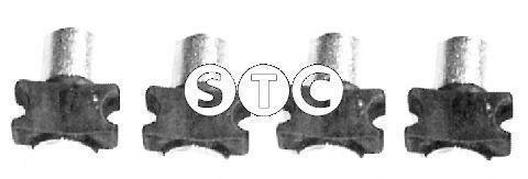 Фото: STC T402436