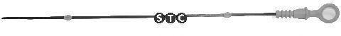 Фото: STC T404795